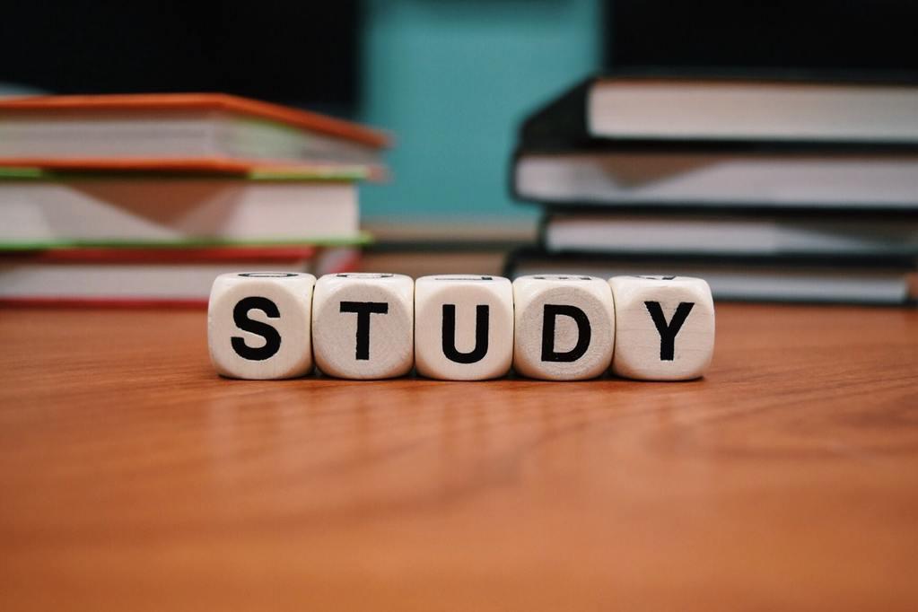 studiare-velocemente-roccogiannino